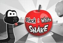 Black and White Snake Jeu
