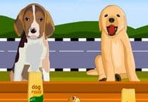 Serve the Dogs Jeu