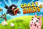 Crazy Birds 2 Jeu